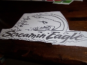 SREAMIN' EAGLE WINDSHIELD/WINDOW BANNER STICKER DECAL